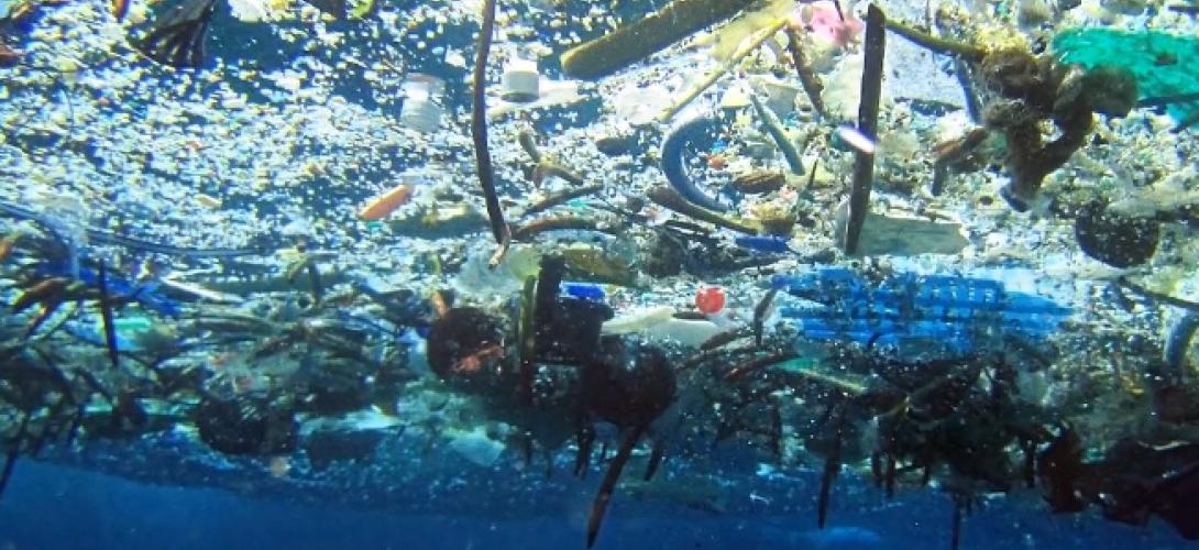 continent plastique 1